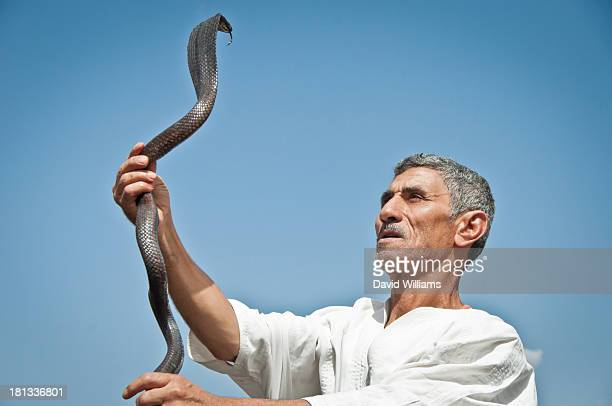 CONTENT] This brave snake charmer in Jeema El Fna Marrakech Morocco showed off his skill and attentiveness to charm this cobra snake