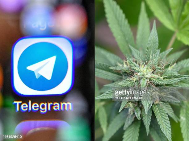 This combination of files pictures created on August 16, 2019 shows the icon of the popular messaging app Telegram taken through a magnifying glass...