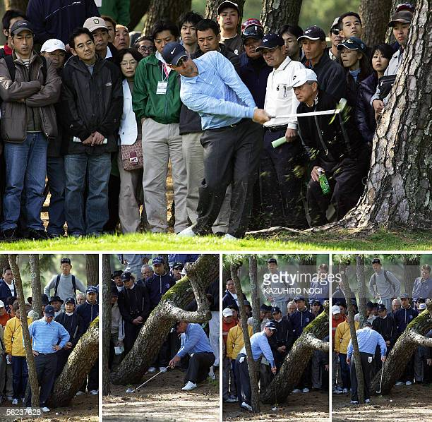 This combo picture shows US golfer David Duval taking a backshot to hit get the ball out of rough on the 5th hole during the third round of the...