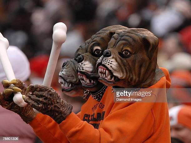 cleveland browns dawg pound stock photos and pictures