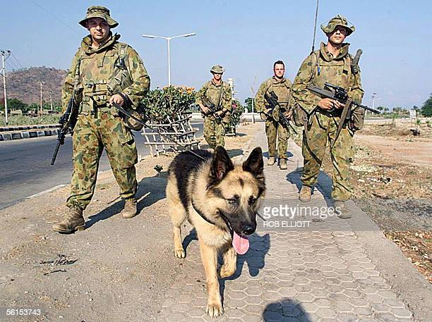 This file photo dated 21 October 1999 shows Saber a fouryearold German Shepherd and highly trained military working dog leading his handler LAC Tony...