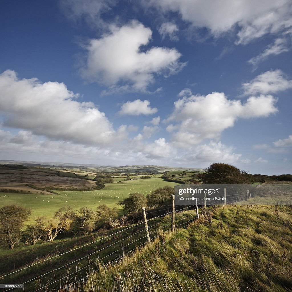 This green & pleasant land. South Wight Landscape : Stock Photo