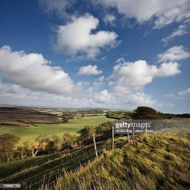 this green & pleasant land. south wight landscape - s0ulsurfing fotografías e imágenes de stock