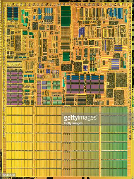 This handout image from Intel Corp shows a die shot of the Centrino processor chip released by Intel on March 12 2003 in Santa Clara California...