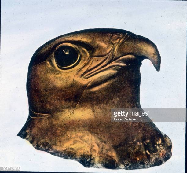 This hawk's head may have come from the time of the chef an artistic achievement which is quite unheard of our ideas It is also found in the Cairo...