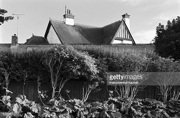 this house grows up from trees - english rooftops - marcoventuriniautieri stock pictures, royalty-free photos & images