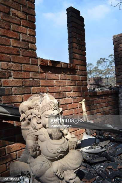 This image is from the Linksview Rd bushfire in Winmalee, Blue Mountains, Australia. An Indian Idol stands, almost undamaged, at the front of a house...