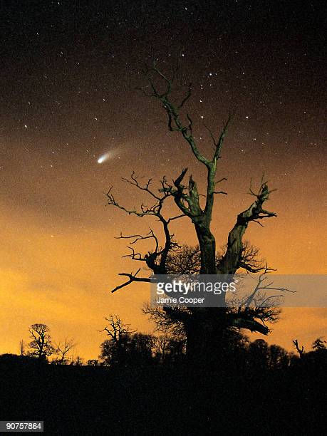 This image of comet HaleBopp was taken in the spring of 2007 using a Canon SLR camera with a timed exposure of approximately 40 seconds Photograph by...