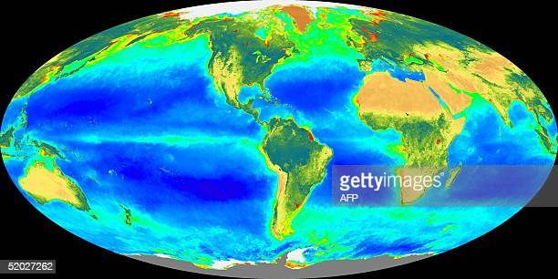 This image released by NASA 17 September shows the distribution of plant life on earth as taken by the Seaviewing Wide Field of View Sensor from...