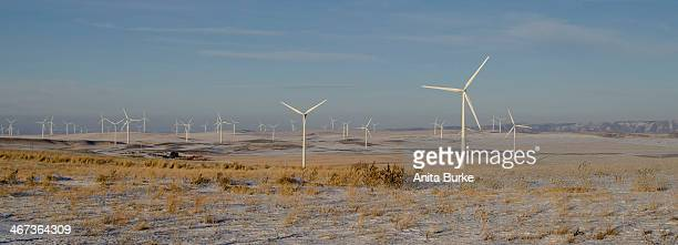 This image was taken in the foothills above Idaho Falls, Idaho. The number of windmills are increasing dramatically each year.