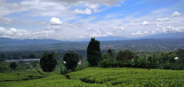 This Is A City That Is A Tourist Spot, Namely The City Of Natural Fences Under Mount Dempo