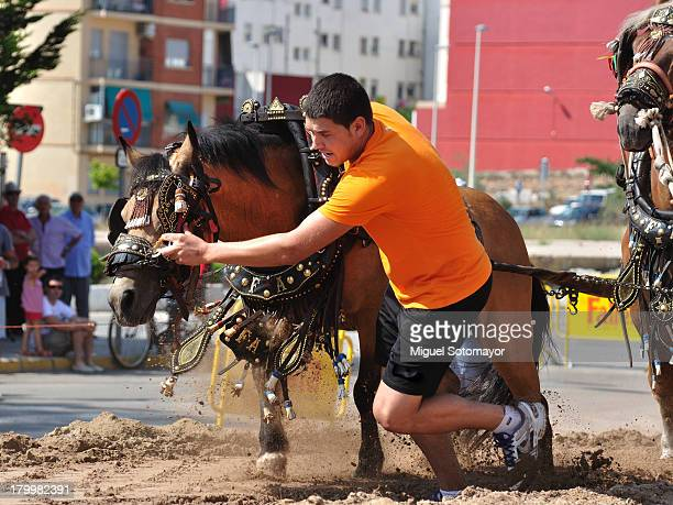 CONTENT] This is a race horse with their car loaded with sand bags The farmer use the horses in the fields but in the festival use the horses for...