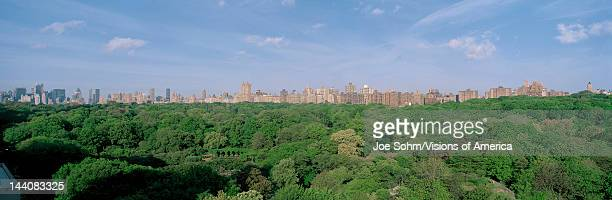 This is an aerial view of Central Park and the Manhattan skyline with the Upper West Side on the right The green trees of Central Park in the summer...
