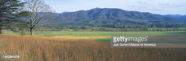 This is Cades Cove Pioneer settlement in the spring The mountains of the Smokies are in the background