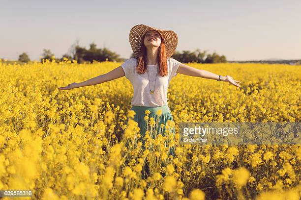this is my dream! - yellow hat stock pictures, royalty-free photos & images