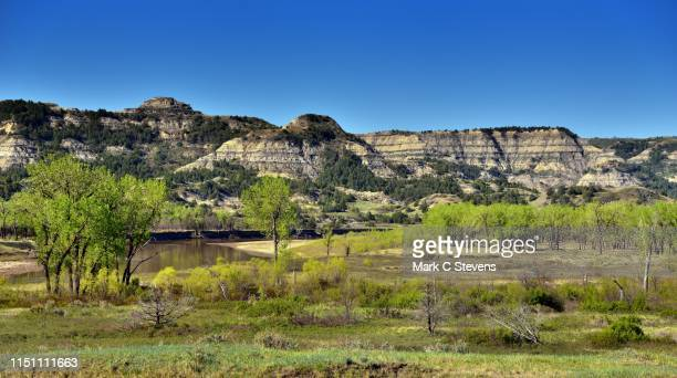 this is north dakota-land! - north dakota stock pictures, royalty-free photos & images