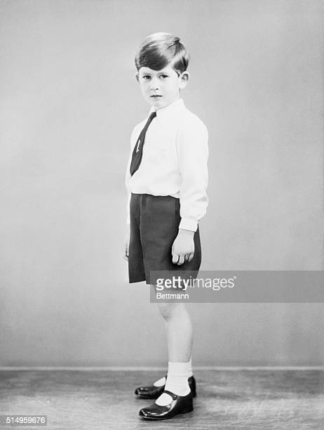 This is one of the official court birthday portraits of Prince Charles, the Duke of Cornwall, who is six years old on November 14th. The new study of...