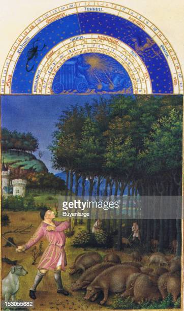 This is the only calendar image executed by Colombe the Limbourg's painted only the zodiacal tympanum above it The picture shows the autumn acorn...