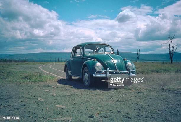 green volkswagen beetle 1963 car at lake nakuru - volkswagen beetle stock photos and pictures