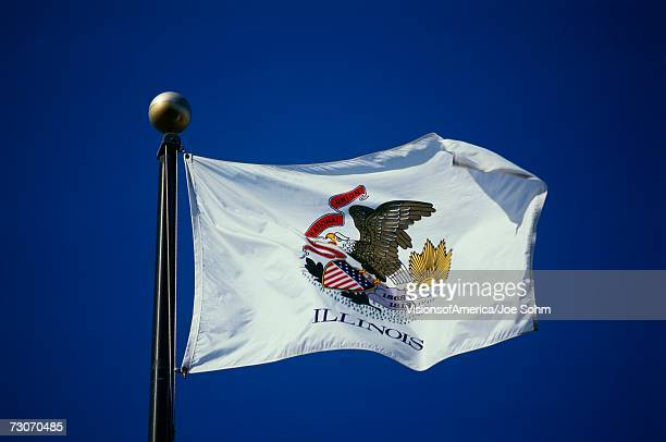 'This is the State Flag waving in the wind. It is on a flagpole, against a blue sky. The main image we see is of an eagle in the center against a white background.'