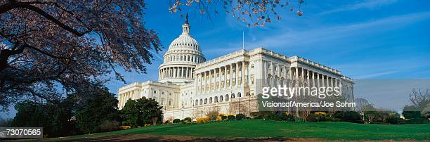 This is the U.S. Capitol in the spring with cherry blossoms. It is set against a blue sky.