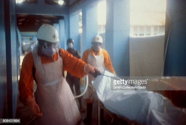 This local Red Cross team is disinfecting a body bag of an Ebola patient in Kikwit Democratic Republic of the Congo 1995 Ebola's natural reservoir is...