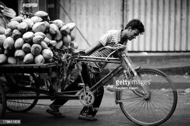 This morning in front of Bose Brothers, a rickshaw-van puller with coconuts.... Through the car window..... Nandan Kanon, Chittagong.