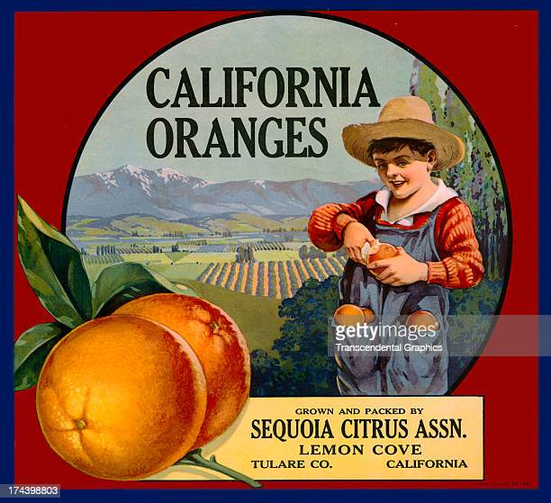 This organge crate label is produced around 1910 in Los Angeles California