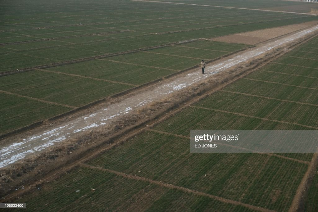 This photo shows a man walking on a path, from the window of a high-speed train during a journey organised for journalists to showcase a newly-built section of track through Hebei province, south of Beijing on December 22, 2012. China was showing off to the media the final link of the world's longest high-speed rail route, set to open on December 26, stretching from Beijing to the southern Chinese city of Guangzhou. Travelling at around 300 kph, trains on the new route are expected to cover the 2,298-kilometre (1,425-mile) journey in a third of the current time from 22 hours to eight. AFP PHOTO / Ed Jones
