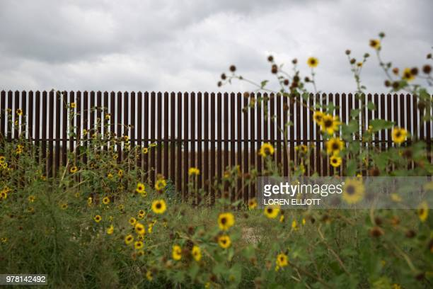 This photo shows a section of the USMexico border fence on June 18 2018 near San Benito Texas President Donald Trump vowed on June 18 that the United...