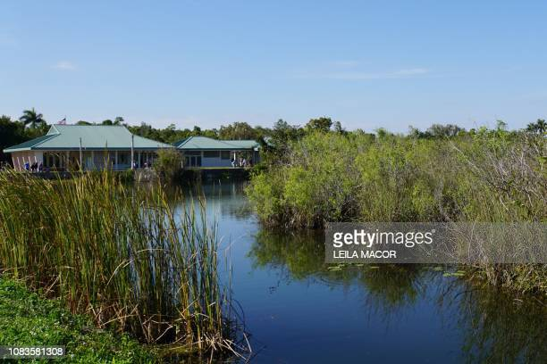 This photo shows a view from the Anhinga Trail in Everglades National Park in Homestead Florida on January 16 2019 Four weeks into the longestever US...