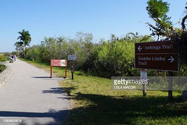 This photo shows the Anhinga Trail in Everglades National Park in Homestead, Florida, on January 16, 2019. - Four weeks into the longest-ever US...
