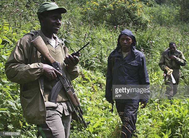 This photo take on June 17 shows armed rangers patrolling in the Virunga National park in Rwanda to protect the habitat of Agashya family mountain...