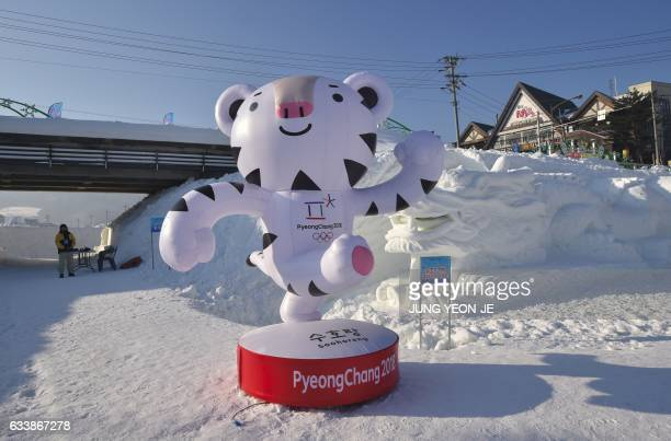 This photo taken February 4 2017 shows the mascot for the 2018 Pyeongchang Winter Olympic Games a white tiger named 'Soohorang' in the town of...