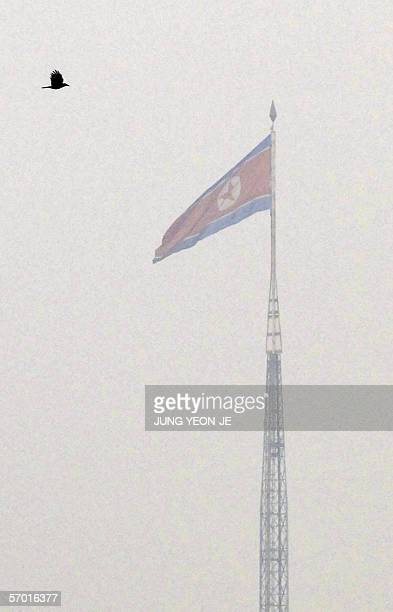 This photo taken from Paju of the South of the Korean border side shows a bird flying near a North Korean flag over the misty North's propaganda...