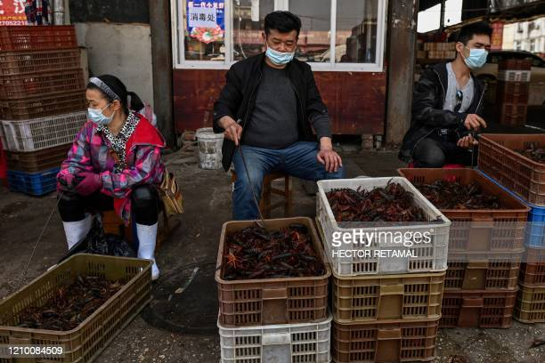 This photo taken on April 15, 2020 shows vendors wearing face masks as they offer prawns for sale at the Wuhan Baishazhou Market in Wuhan in China's...