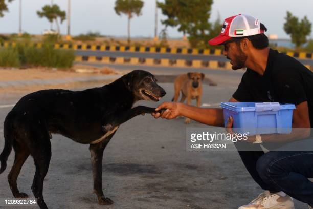 This photo taken on April 2, 2020 shows resident Ali Khurshid playing with stray dogs before feeding them on a street near Clifton beach during a...