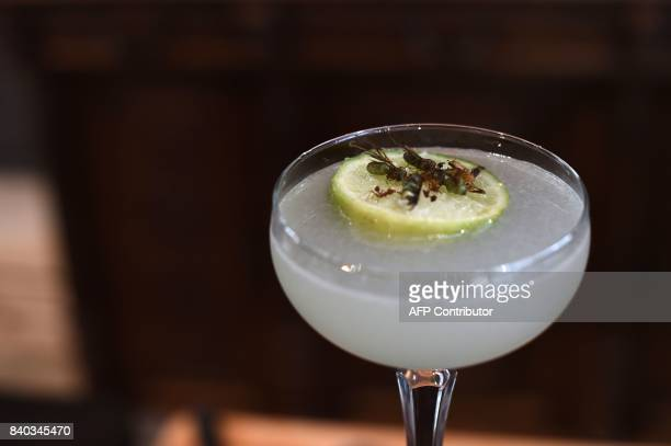 This photo taken on August 15 2017 shows edible winged ants being used as garnish for a margarita at Insects in the Backyard which says it offers the...