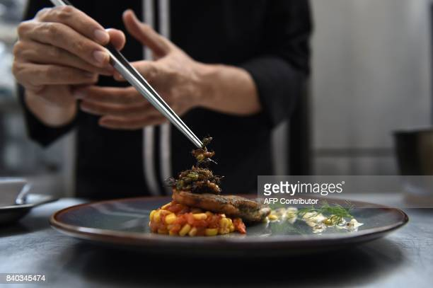 This photo taken on August 15 2017 shows edible winged ants being placed on a fish fillet inside the kitchen of Insects in the Backyard which says it...
