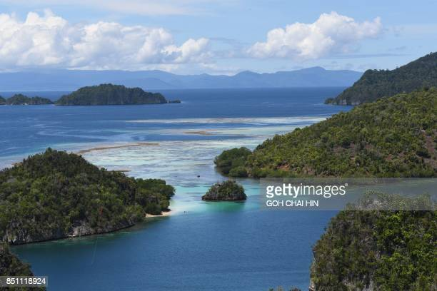 This photo taken on August 21 2017 shows the blue sea around Raja Ampat which means Four Kings in Indonesian in Indonesia's far eastern Papua...