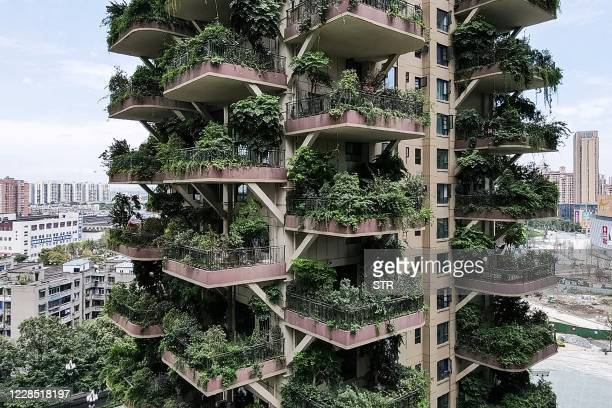 TOPSHOT This photo taken on August 3 2020 shows apartments with balconies covered with plants at a residential community in Chengdu in China's...