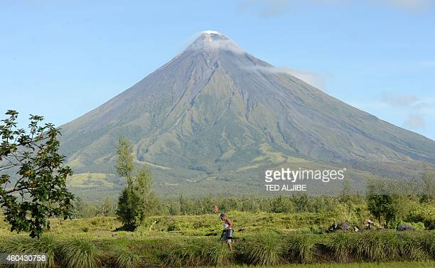 This photo taken on December 11 a farmer walking along a rice field near the foot of Mayon volcano in Legazpi City Albay province AFP PHOTO/TED ALJIBE