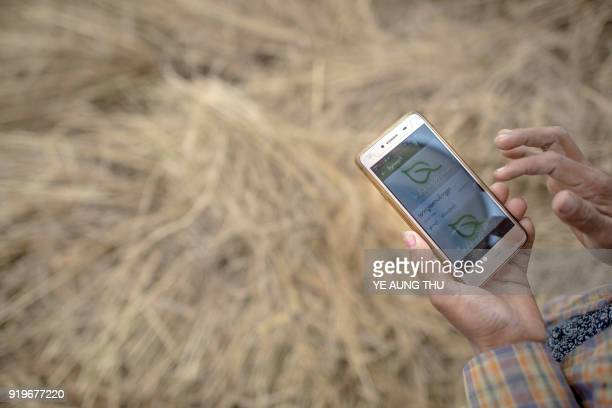 This photo taken on December 27 2017 shows a farmer using a mobile app while working in a rice field on the outskirts of Yangon New smartphone apps...