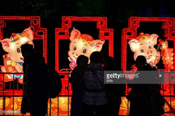 This photo taken on February 18 2019 shows people looking at pig lanterns on the eve of the Lantern Festival at the Old Summer Palace in Beijing The...