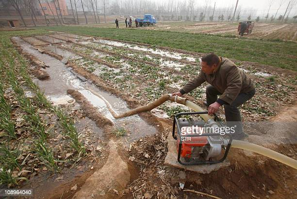 This photo taken on February 8 2011 shows a Chinese farmer watering his droughtstricken wheat field in Luoyang north China's Henan province as the...