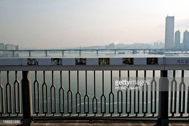 This photo taken on January 11 2013 shows pictures of children placed by the government to dissuade potential suicides along the railing at Mapo...