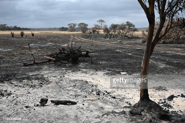 This photo taken on January 16 2020 shows a burnt out part of local farmer Rick Morris' 2300acre property on Kangaroo Island after bushfires ravaged...