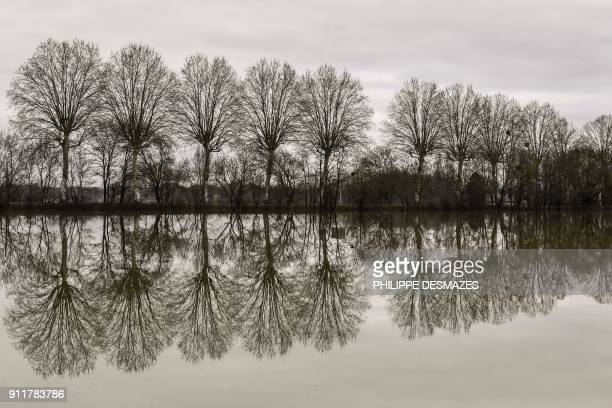 TOPSHOT This photo taken on January 29 2018 shows trees reflected in the water along the flooded banks of the Saone River between Tournus and Macon...