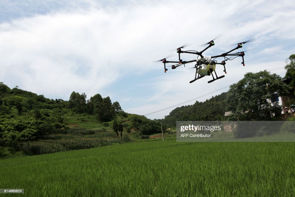 CHINA-AGRICULTURE-SCIENCE : News Photo