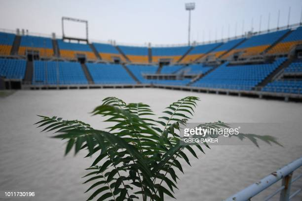This photo taken on July 23 2018 shows a plant growing in the beach volleyball stadium built for the 2008 Beijing Olympic Games in Beijing A decade...